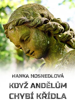 Když andělům chybí křídla –  Hanka Hosnedlová