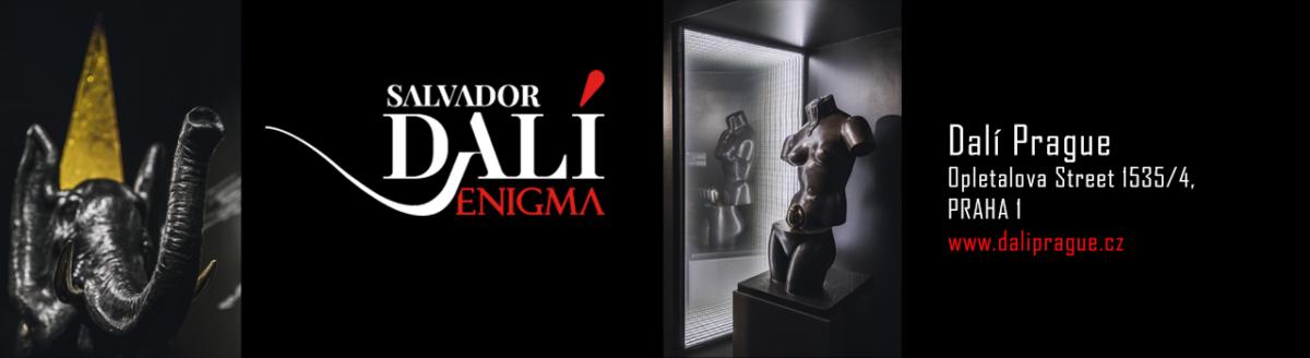 Salvador Dalí-Enigma / Praha